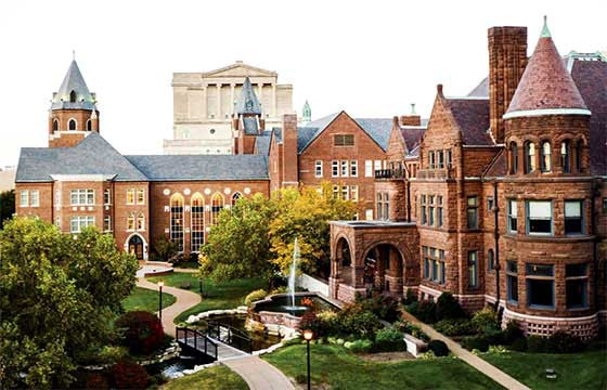 Study at St. Louis University USA