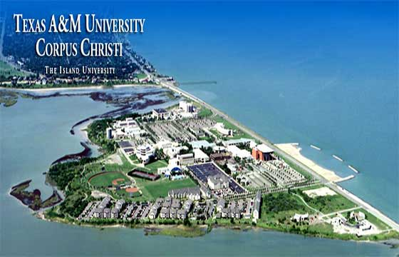 Study at Texas A And M University Corpus Christi USA