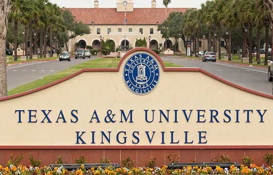 Study at Texas A And M University Kingsville USA