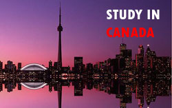 Higher education institutions in canada